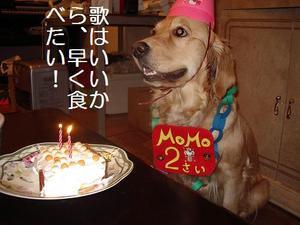 Momo2_7